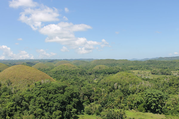 BOHOL TOURIST SPOTS 5 Amazing Reasons to Visit Bohol