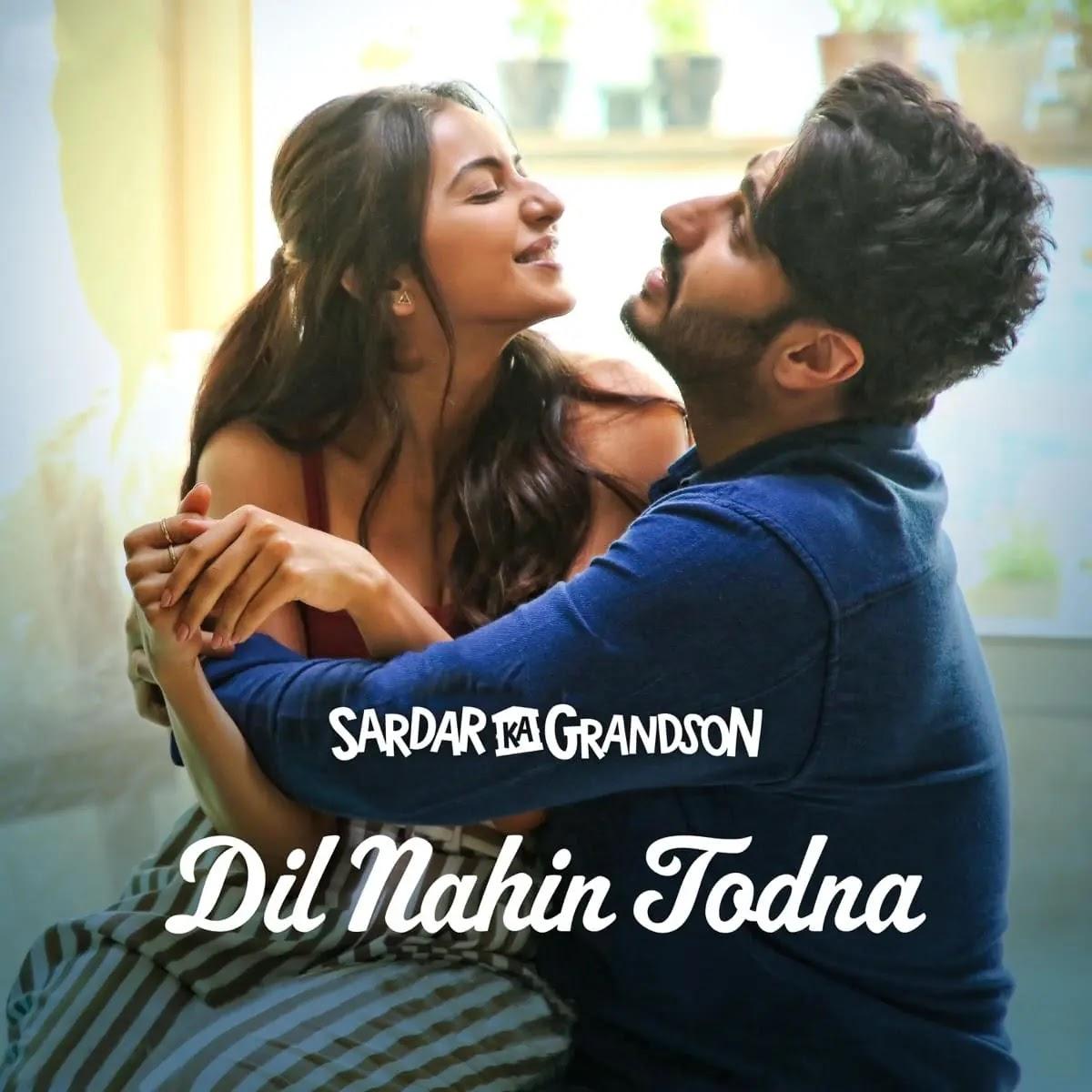 Dil Nahin Todna Song Download MP3 With Hindi Lyrics