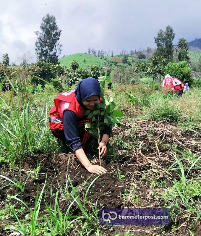 PMI Jember Kirim Relawan Reboisasi Gunung Ijen