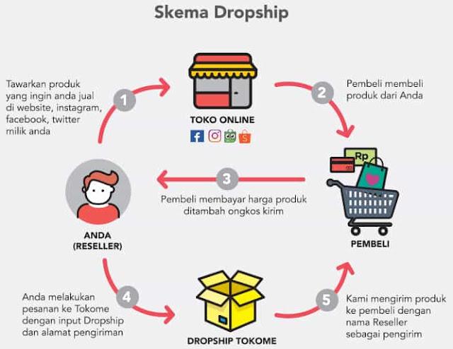 skema dropshipper