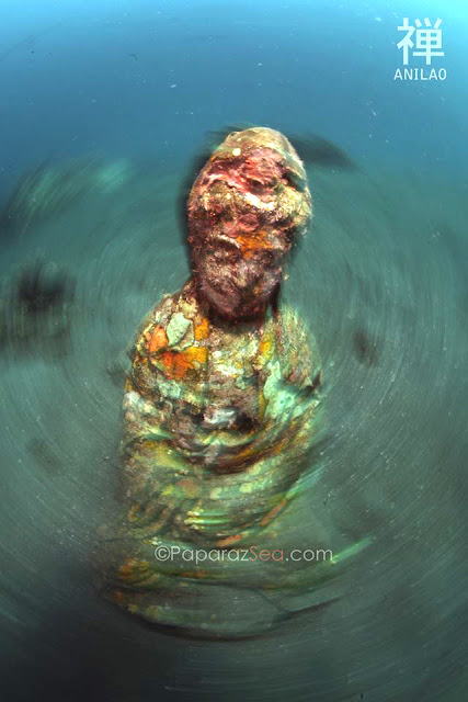 Scuba Diving, Underwater Photoography, Learn Scuba, Learn Photography