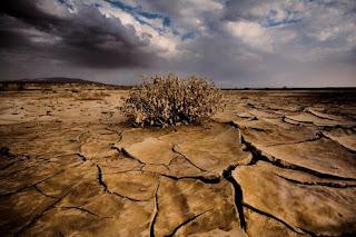 Waspadai Dampak Perubahan Iklim yang Memicu Bencana dan Wabah
