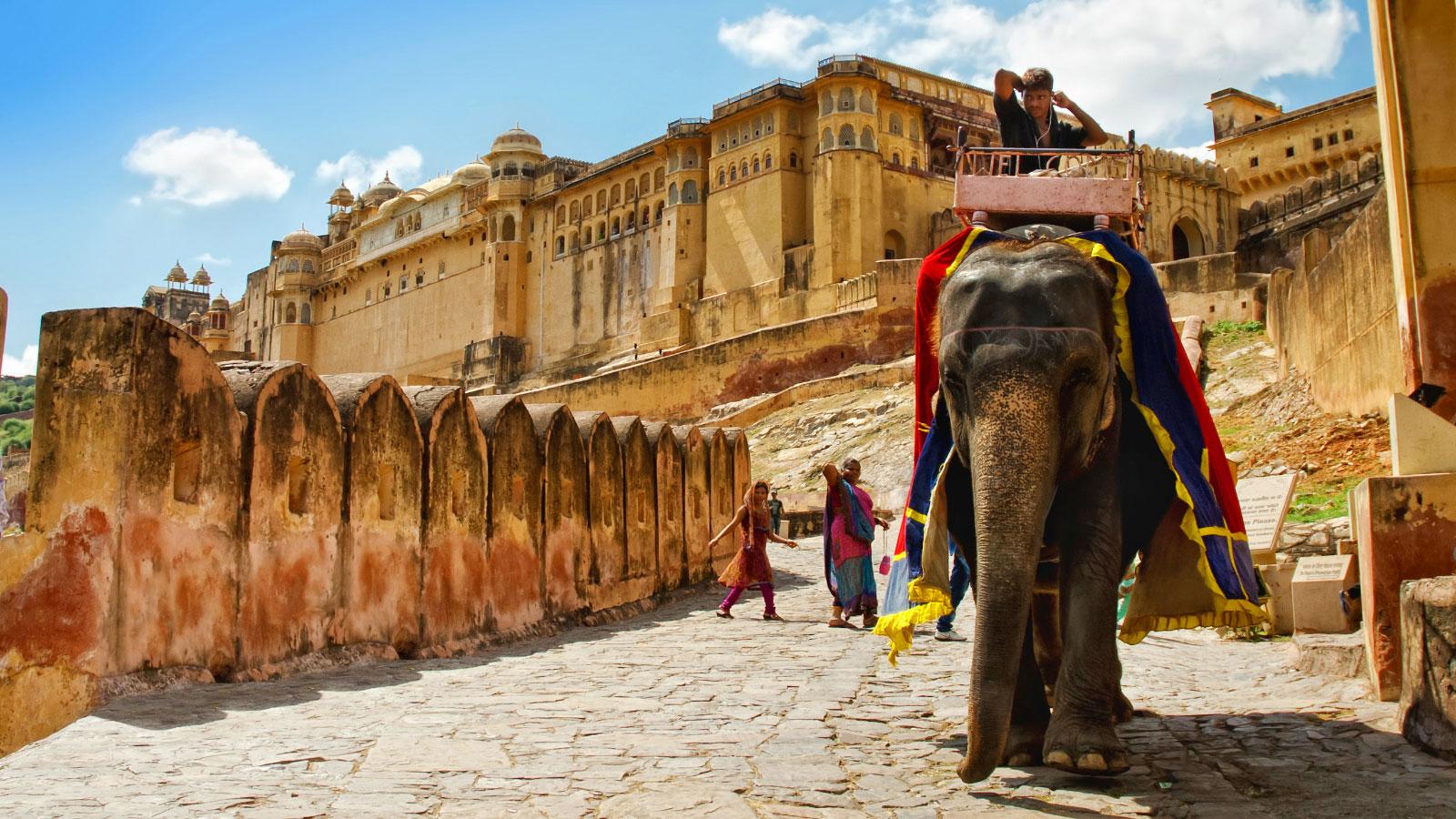 Elephant ride in Amber Fort, Jaipur