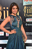 Shriya Saran in Beautiful Transparent Dark Gown IIFA Utsavam Awards 2017 039.JPG
