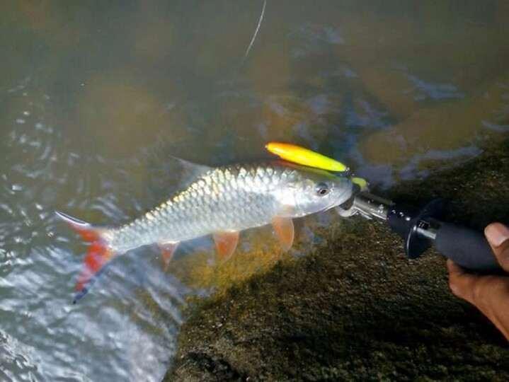doa mancing ikan di sungai
