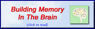 http://mindbodythoughts.com/building-memory-in-the-brain/