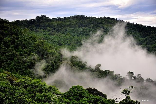 Sương mù ôm trọn Ba Vì quanh năm