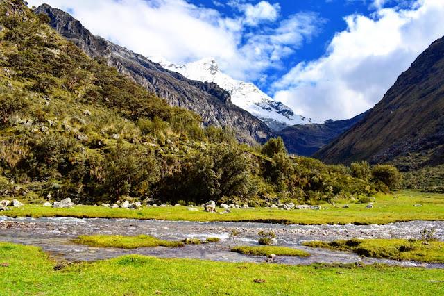 riacho turvo com pedras ao redor