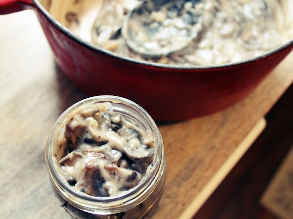 What to do with a plethora of mushrooms (Homemade Condensed Cream of Mushroom Soup)