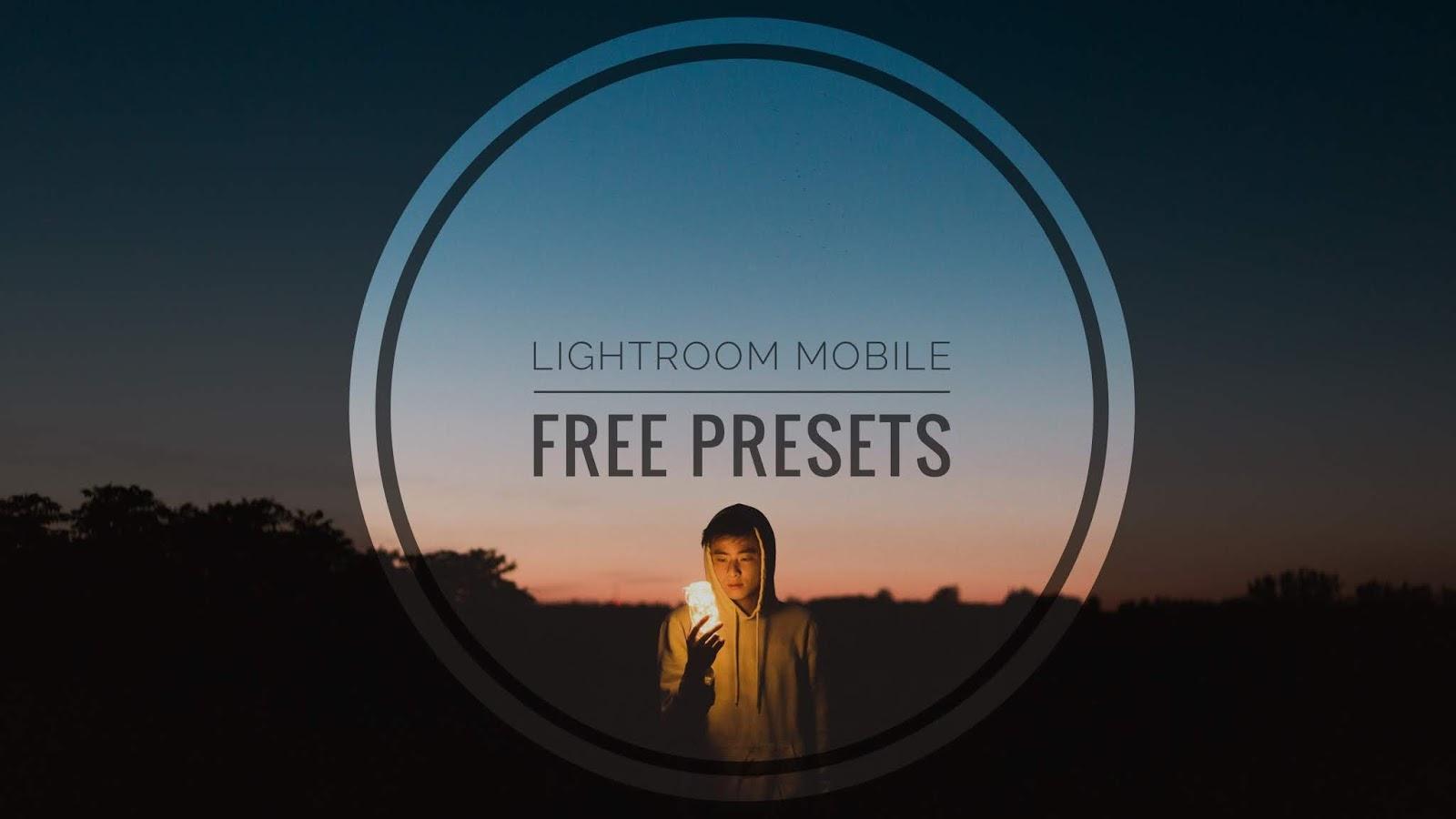 lightroom mobile presets