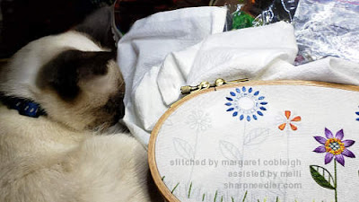 Siamese kitten helping with embroidery