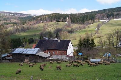 Przełęcz Sokola okolice