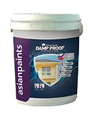 Asian Paints SmartCare Damp Proof