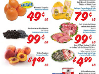 Food 4 Less Weekly Ad Scan January 20 - 26, 2021
