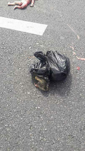 Photos: Decomposed body of eight months foetus falls from pickup truck onto highway