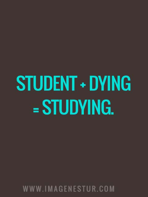 Student + dying = Studying.