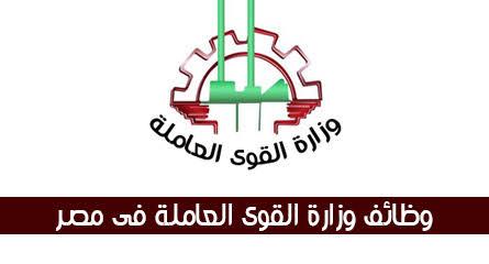وزارة القوى العاملة تعلن عن 4246 فرصة عمل للشباب بالمحافظات