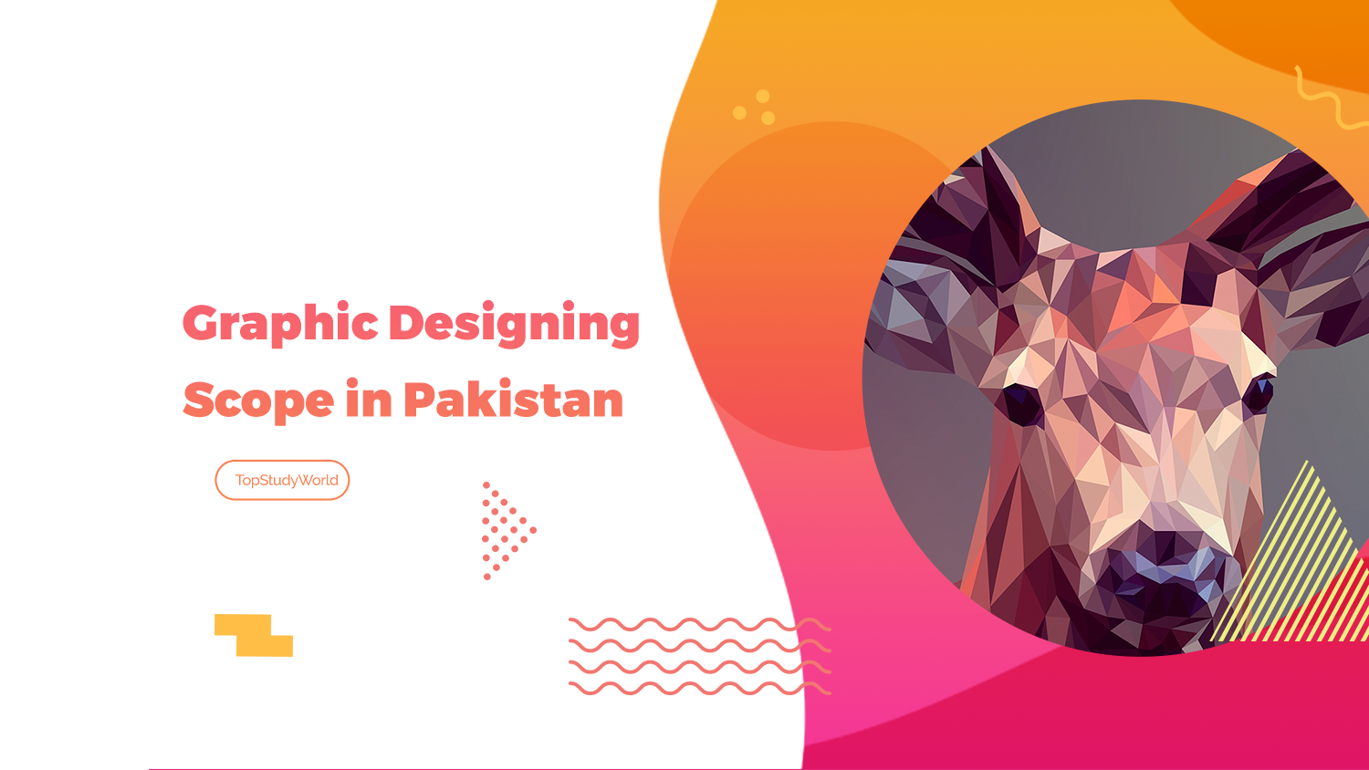 Scope Of Graphic Designing In Pakistan Jobs Salary Admission Future Top Study World