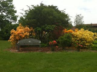 the UW arboretum