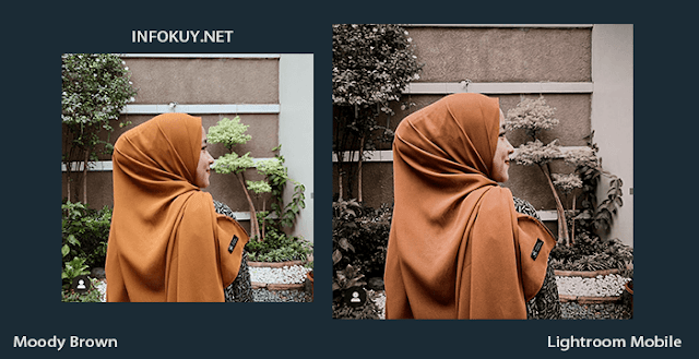 Tutorial Lightroom Moody Brown