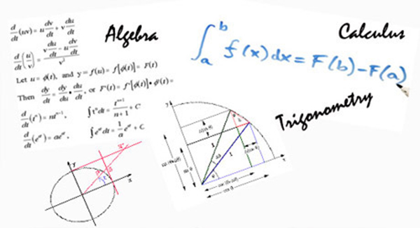 Calculus, Trigonometry and Algebra were originated in India