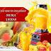 Review máy xay sinh tố công nghiệp Shika 1500W