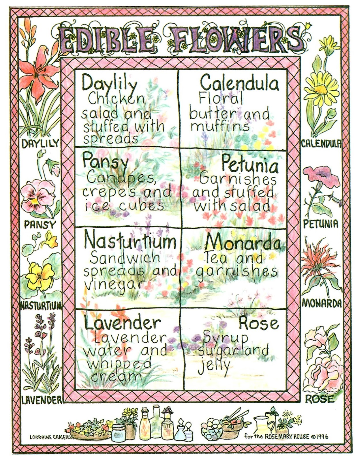 Rosemary's Sampler: Edible Flowers Chart
