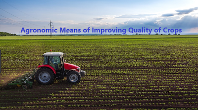 How to Improve Crop Quality