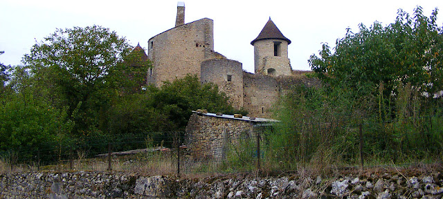 Castle, Ingrandes, Indre, France. Photo by Loire Valley Time Travel.