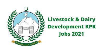 Livestock and Dairy Development KPK Jobs 2021 - Livestock and Dairy Development Jobs 2021 - Livestock KPK Jobs 2021
