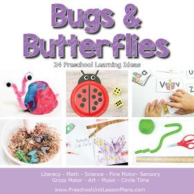 Bugs and Butterflies Preschool Theme
