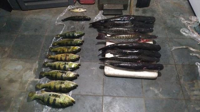 Em Panorama, pescadores são multados em R$ 4,6 mil por pesca com métodos não permitidos