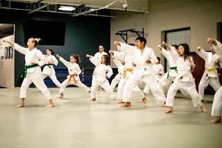 kids martial arts ann arbor, ann arbor kids martial arts
