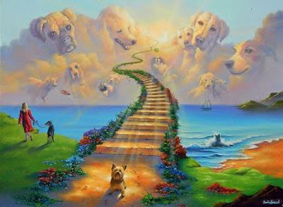 La leyenda del Puente del Arcoiris, el cielo de nuestras mascotas
