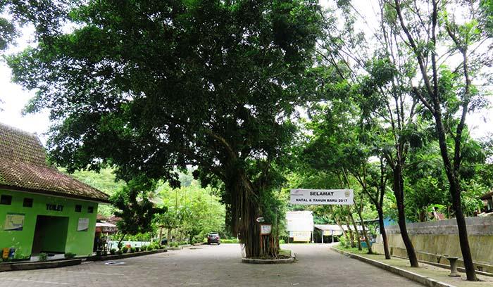 Kawasan Parkir Goa Selarong