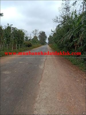 Bán đất khu công nghiệp Phú Xuân Huyện Cư M'gar BMT 2 tỷ 600