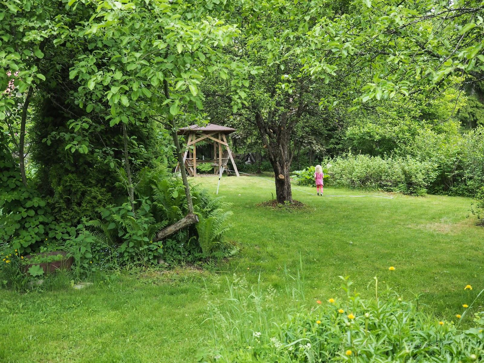 vanha puutarha