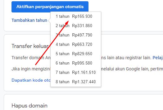 Cara Perpanjang Google Domains dengan Jenius Visa