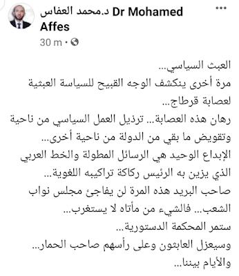 محمد العفاس : ستمر المحكمة الدستورية... وسيعزل العابثون وعلى رأسهم صاحب الحمار...