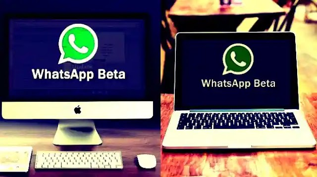 WhatsApp Launches Video and Voice Calls in its Desktop Version