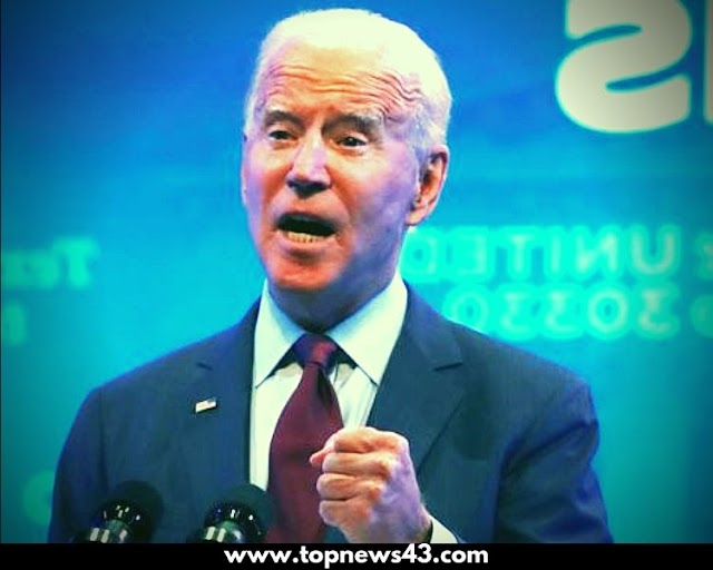 US presidential campaign Joe Biden publishes 2019 tax return