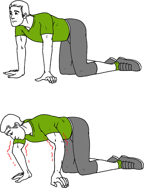 Exercises That Can Heal Your Spine