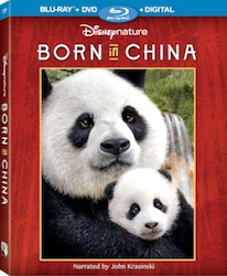 DisneyNature's BORN IN CHINA Coming 8/29