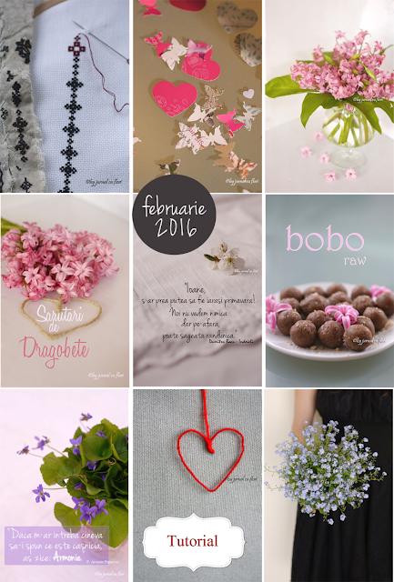 mozaicul lunii februarie 2016, colaj postari in imagini