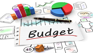 Create and Maintain Budget