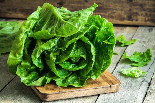 Berikut Manfaat Selada Romaine Untuk Kesehatan