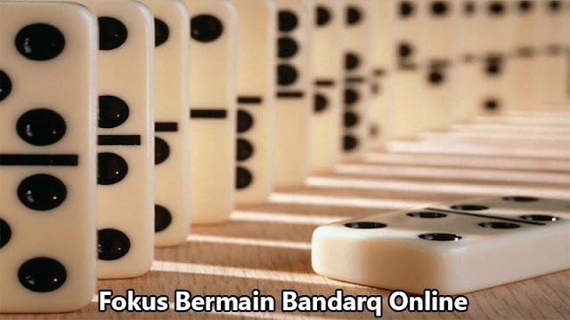 Fokus Bermain Bandarq Online