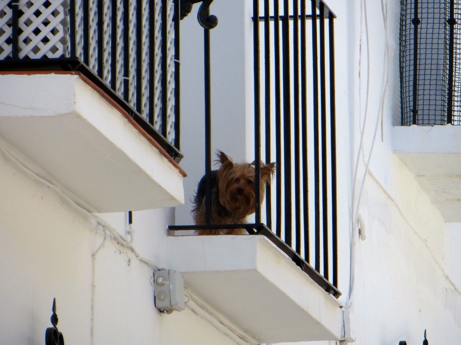 balconies of Mijas