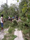 Angin puting beliung rusak puluhan rumah warga Kedung Ranti