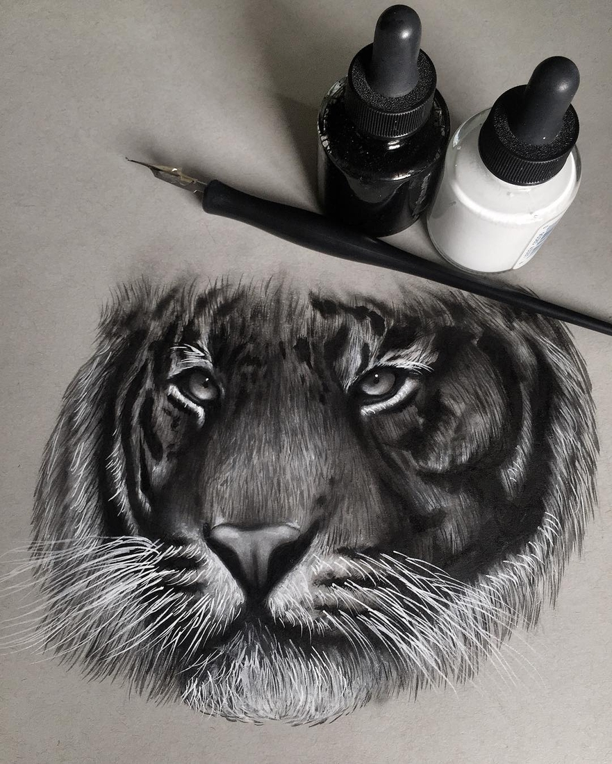 11-Tiger-Jonathan-Martinez-Realistic-Pencil-Animal-Drawings-www-designstack-co